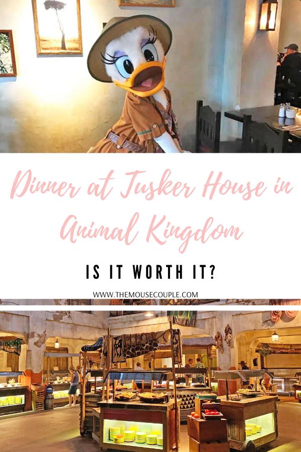 tusker house in animal kingdom